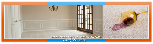 carpet steam cleaning in Washington,DC